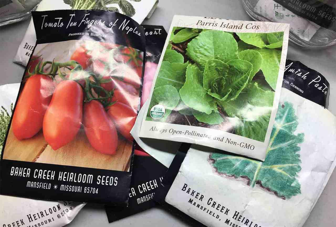 ¿Cuánto tiempo puedo guardar semillas de jardín?