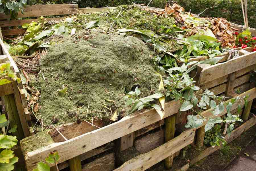 compost in bins