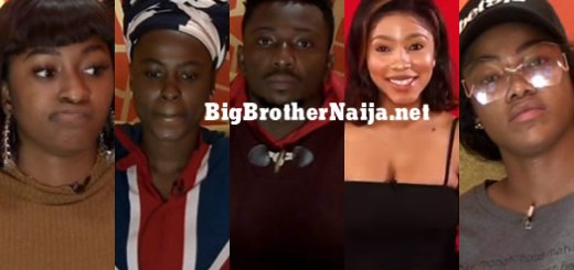 Big Brother Naija 2019 Week 2 Nominated Housemates