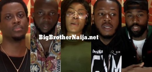 Big Brother Naija 2019 Week 3 Nominated Housemates