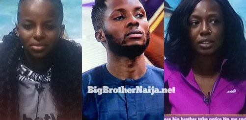 Tolanibaj, Brighto and Wathoni evicted from Big Brother Naija 2020 on day 42