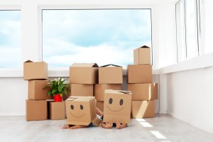 Ensuring that you are using the right packing materials for your domestic removal