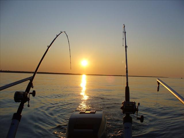 FISHING 2_1437165501664.jpg