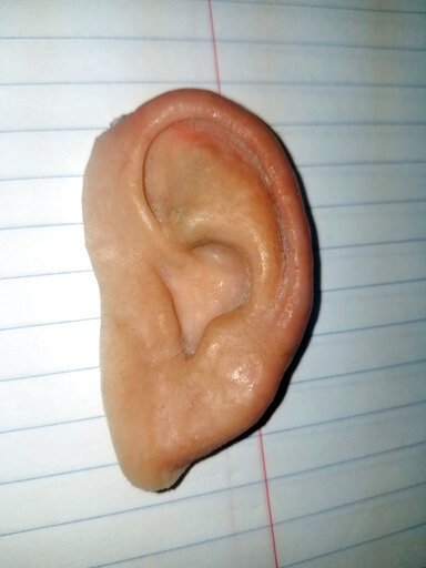 Florida police find prosthetic ear owner after Facebook post