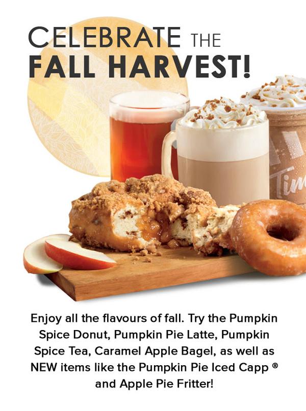 Tims Dark Fall Harvest