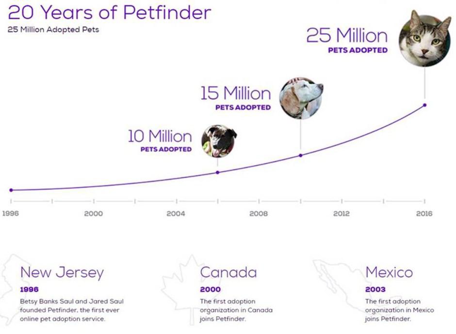 petfinder timeline