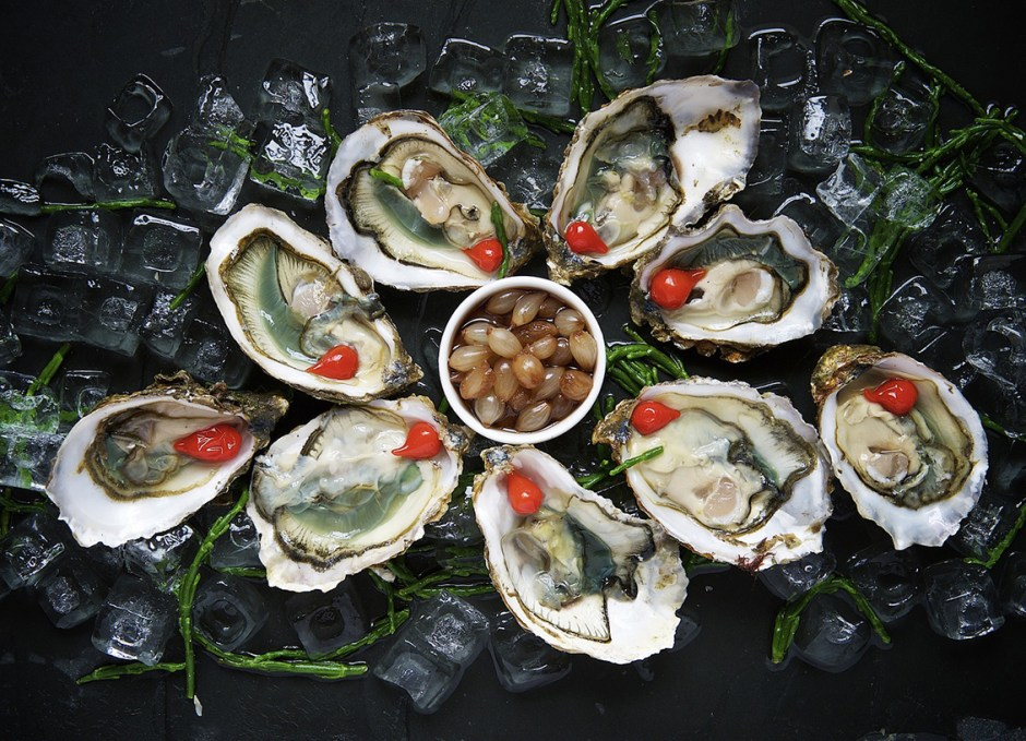 Philly oysters