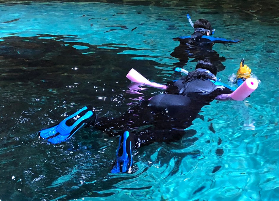 Aquarium Encounters sabrina helene