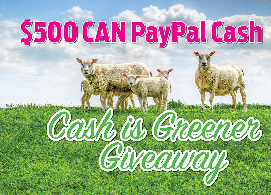 Cash Is Greener Giveaway feature