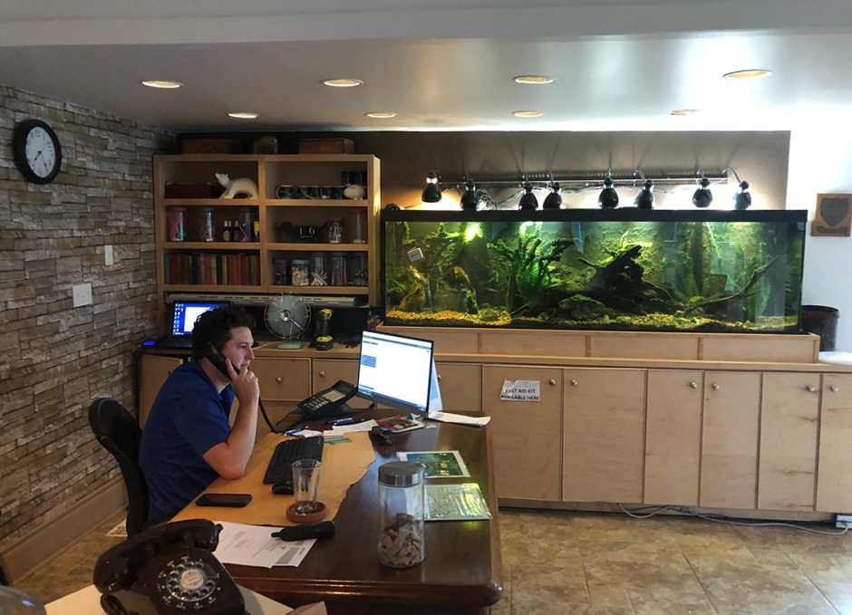 viamede resort front desk and fish tank