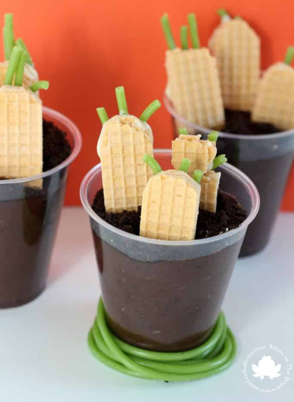 2019 Easter Treats 04 Carrot Patch Pudding Cups