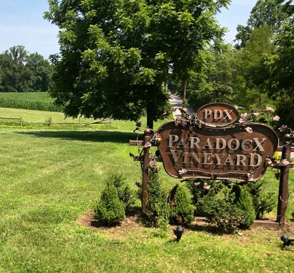 Raise A Glass: A Tour and Tasting at Paradocx Vineyard in Chester County #ad #BDKPhilly @VisitPhilly
