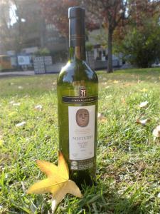 mendoza şarabı