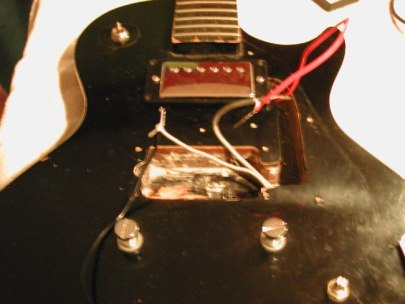 fiesta humbuckers twisted wires