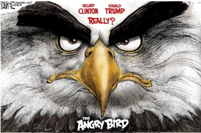 Angry-Bird-copy