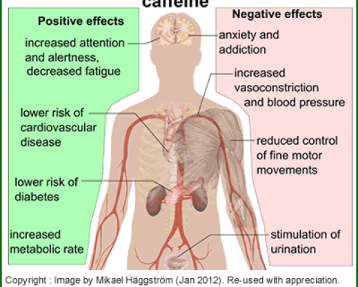 Effects-of-caffeine-on-the-body_400w