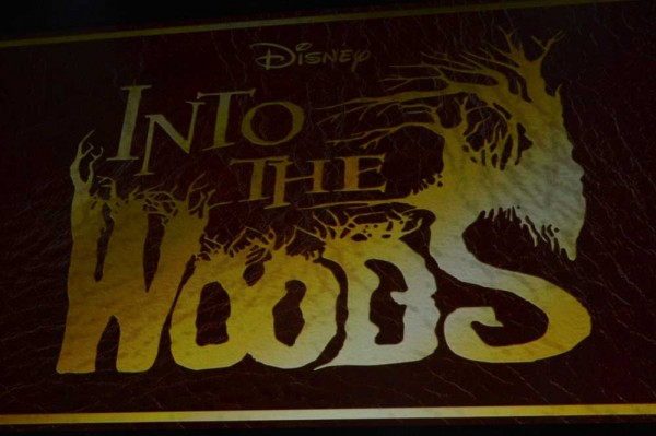 into-the-wood-logo