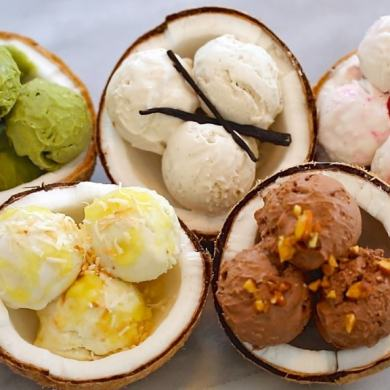 Dairy-Free Coconut Homemade Ice Cream (2 Ingredients/No Machine)
