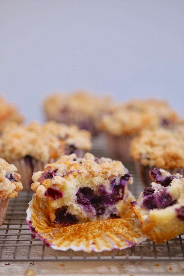blueberry muffins, blueberry muffin recipe, homemade blueberry muffins, best blueberry muffins, easy blueberry muffings, greatest blueberry muffins, perfect blueberry muffins, classic blueberry muffins, how to make blueberry muffins, blueberry muffins help