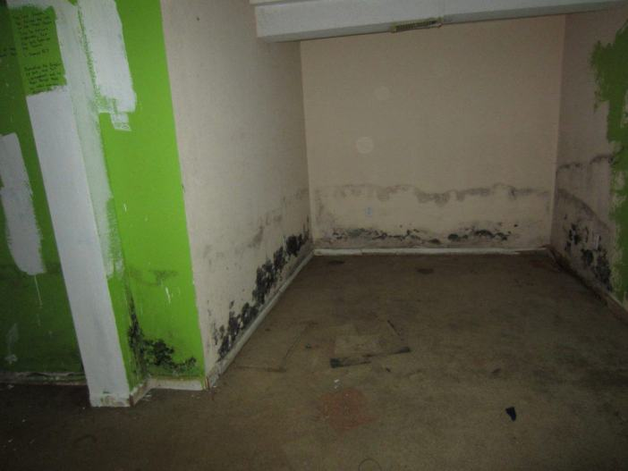 mold discovered during inspection