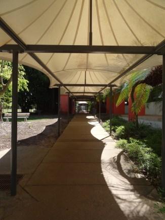 Darwin University