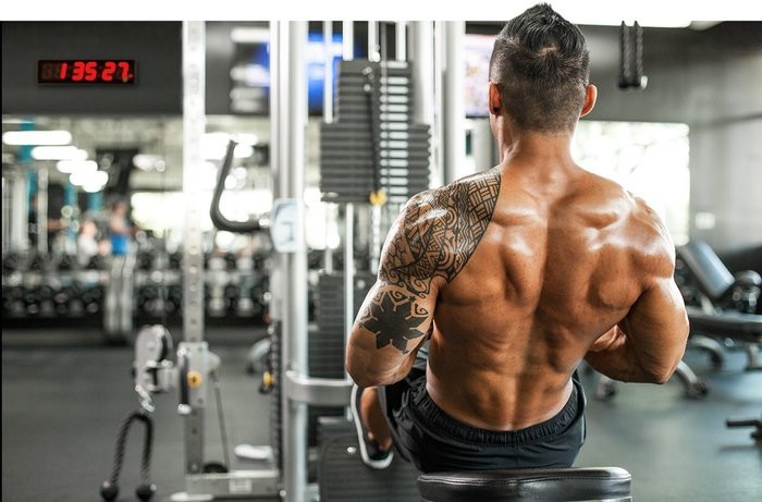 bulking steroids for muscle gain