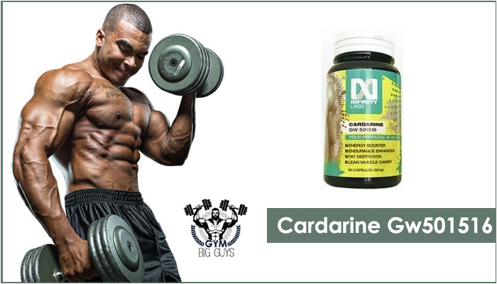 Cardarine GW 501516 Sarms Review – Best for Burning Fat in 2020!