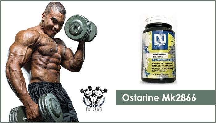 Ostarine MK 2866 Sarms Review – Best for Bodybuilding Goals in 2020!