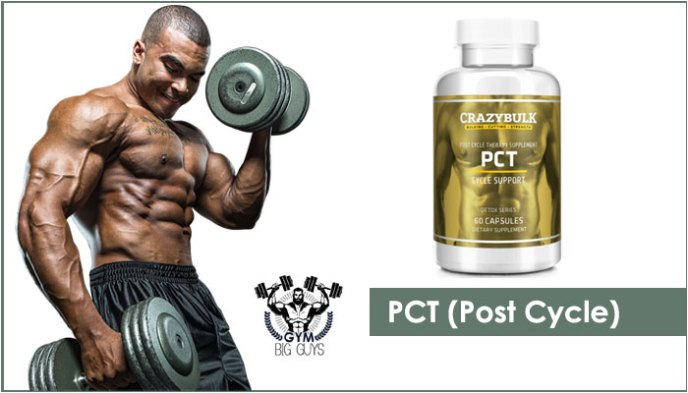 PCT Cycle