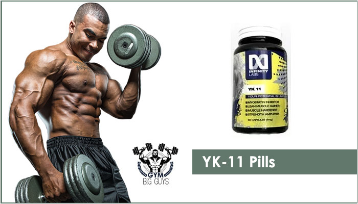 YK11 SARM Review – A Synthetic Steroidal Cycle for Muscle Building! [2020]