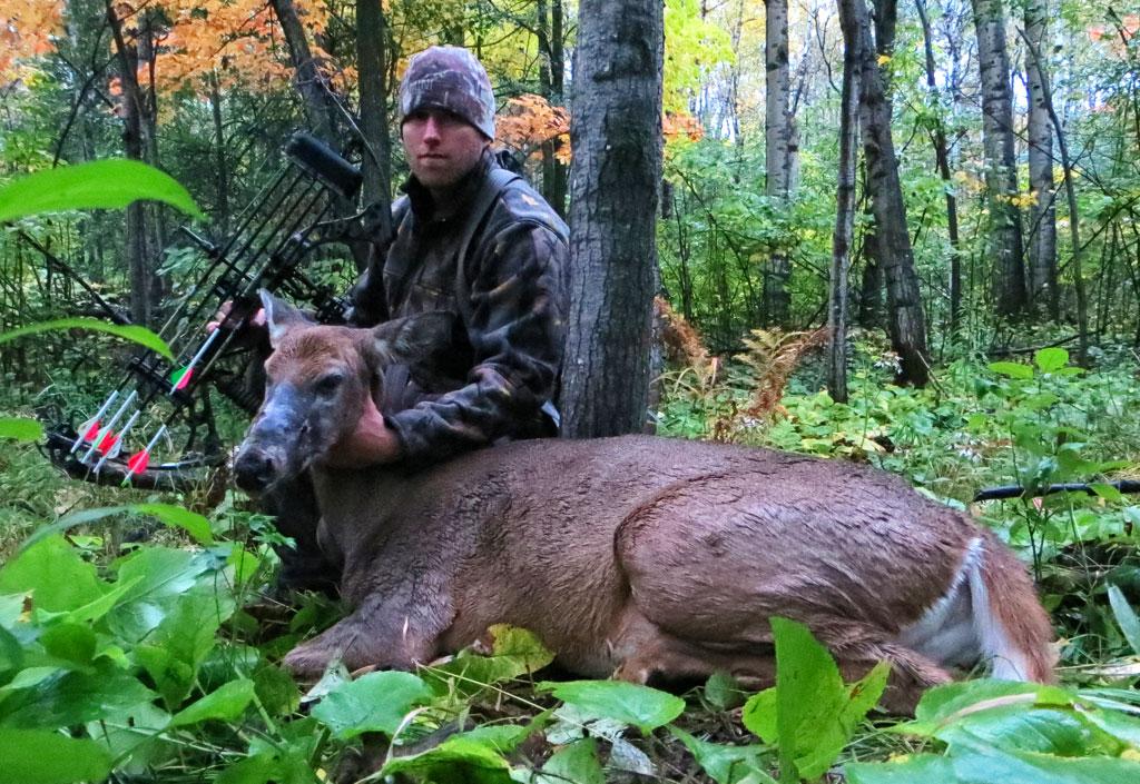 archery whitetail deer doe