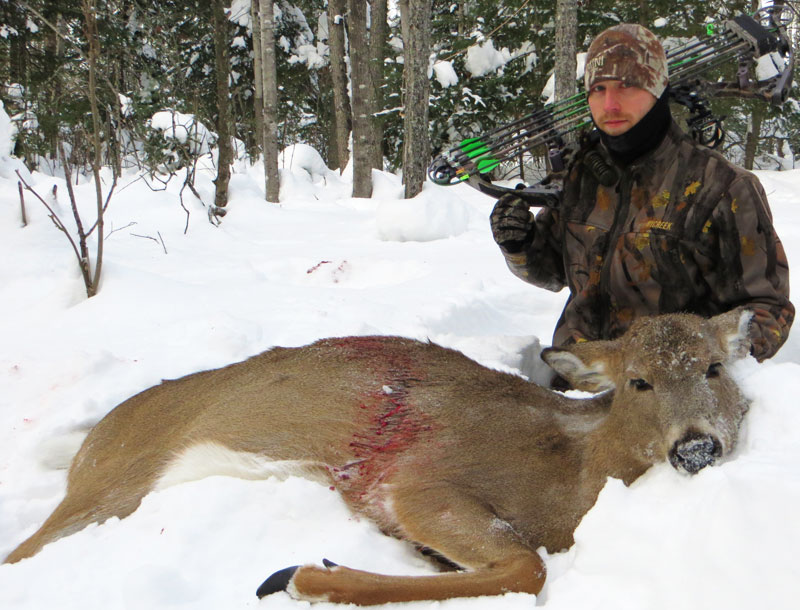 bowhunting whitetail deer
