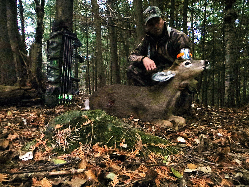 Minnesota Archery Deer Hunting
