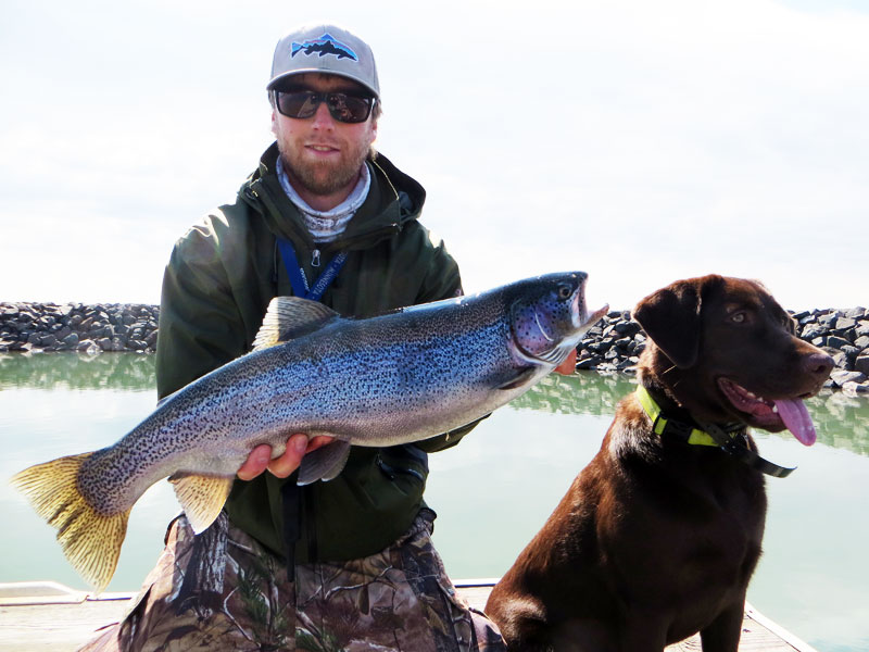 Fly fishing Lake Superior Rainbow Trout