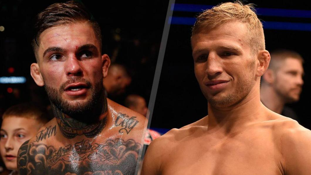 https://i2.wp.com/www.bigonsports.com/wp-content/uploads/2017/01/ufc-dillashaw-garbrandt-odds-picks-predictions.jpg?w=1060&ssl=1