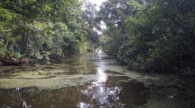 The Great River Road, Part 23:  Venice, LA – The End