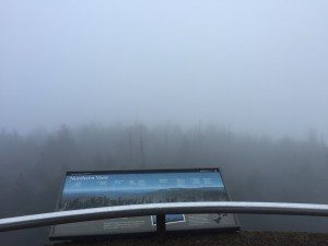 Marvelous View from Clingmans Dome