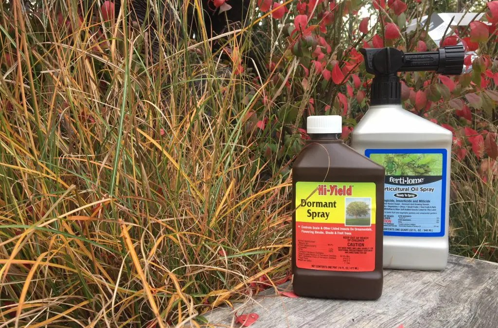 Understanding Horticultural Oil vs Dormant Oil