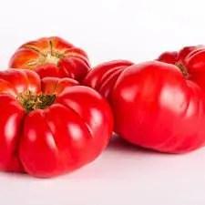 Tomato Care