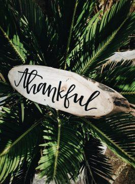 dankbaar in Engels