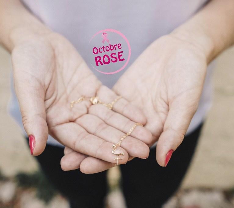pink-flamingo-la-caleya-7bis-octobrerose