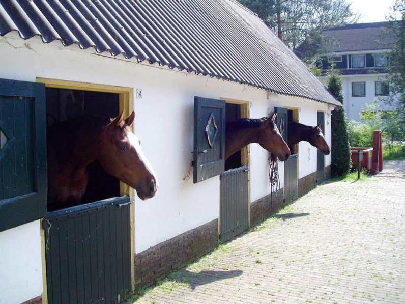 Bijzondere Overnachting Origineel Overnachten Luxe Fletcher Hotel Malle Jan op de Veluwe nabij Apeldoorn5