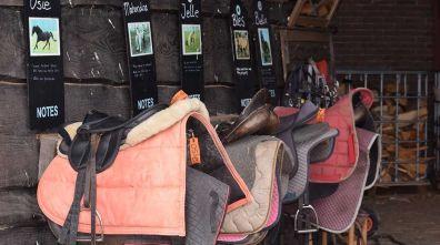 Bijzondere Overnachting Origineel Overnachten Slapen op boerderij De Lange Weide BoerenBed in Dwingeloo4