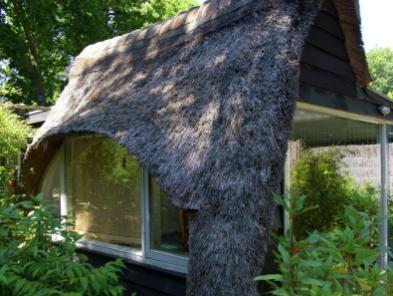 Bijzondere Overnachting Origineel Overnachten Vakantiehuis het Roefje in Bergen aan Zee3