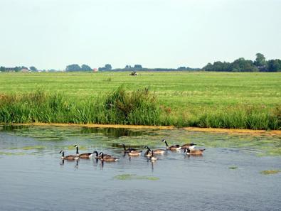 Bijzondere Overnachting Origineel Overnachten Slapen in een watervilla op het water in Friesland9