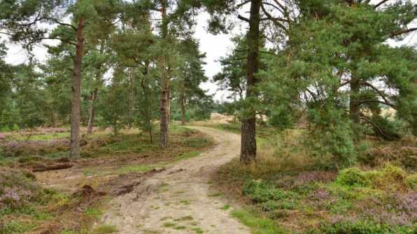 Bijzondere overnachting Landgoed De Uitkijk Hellendoorn4