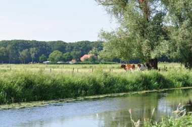 Bijzondere Overnachting Slapen bij de Boer Hoeve Draafsel Lochen Gelderland Achterhoek17