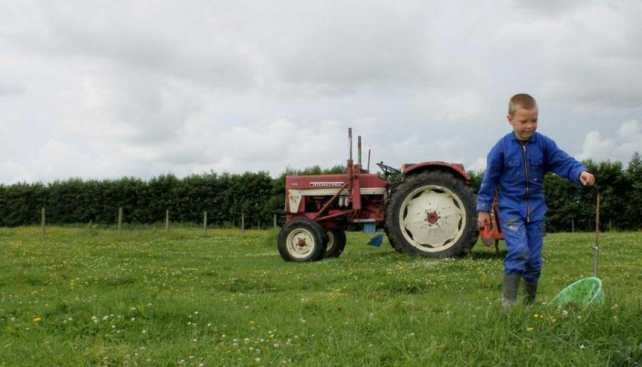 Bijzondere Overnachting Slapen bij de Boer op De Groene Hoeve Wijdenes boerderij Noord-Holland18