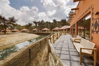 Bijzondere-Overnachting-Safaripark-Resort-De-Beekse-Bergen-Hilvarenbeek-Brabant29