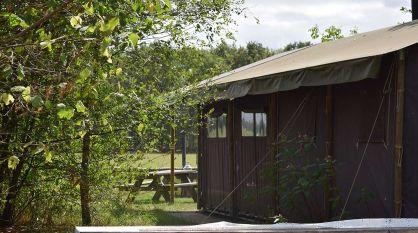 Bijzondere Overnachting Origineel Overnachten Slapen op een boerderij de Jobinghoeve in Grolloo met knuffelschuur in Drenthe10